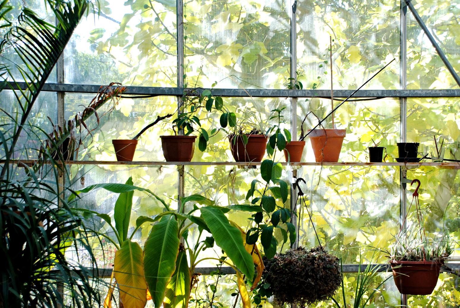 Botanischer garten Kerkrade